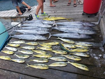 Hatteras deep sea fishing charters outer banks nc for Hatteras fishing reports