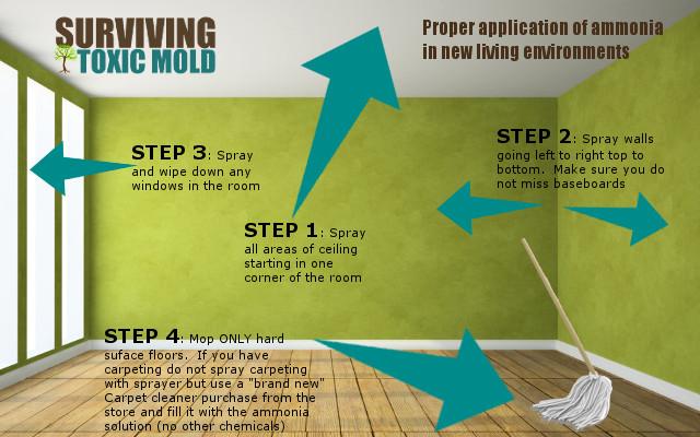 Ammonia Solution To Clean Carpet – Meze Blog